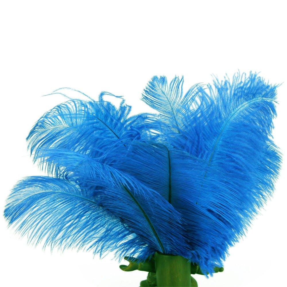 amazon com sodial tm 10pcs home decor blue ostrich feathers