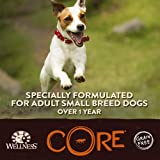 Wellness CORE Natural Dry Grain Free Small Breed