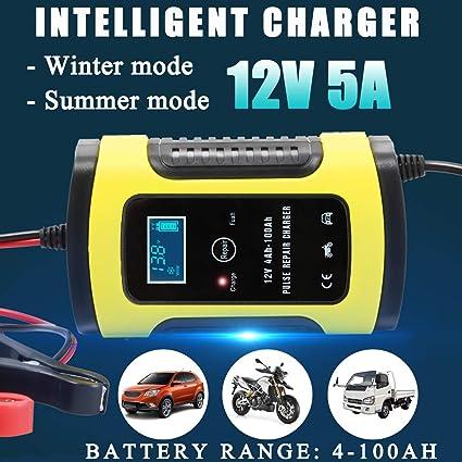 Kungfu Mall iMars - Cargador de batería LCD de 12 V y 6 A ...