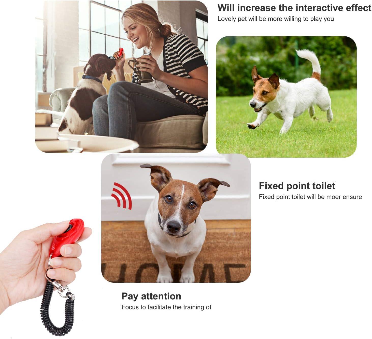 Bunt Hundeklicker Knopf f/ür Hunde Katzen Pferde Effektive Haustier Trainings Werkzeuge f/ür das Verhalten des Welpen 4 St/ück Profi Clicker Hunde mit Spiralband Clickertraining