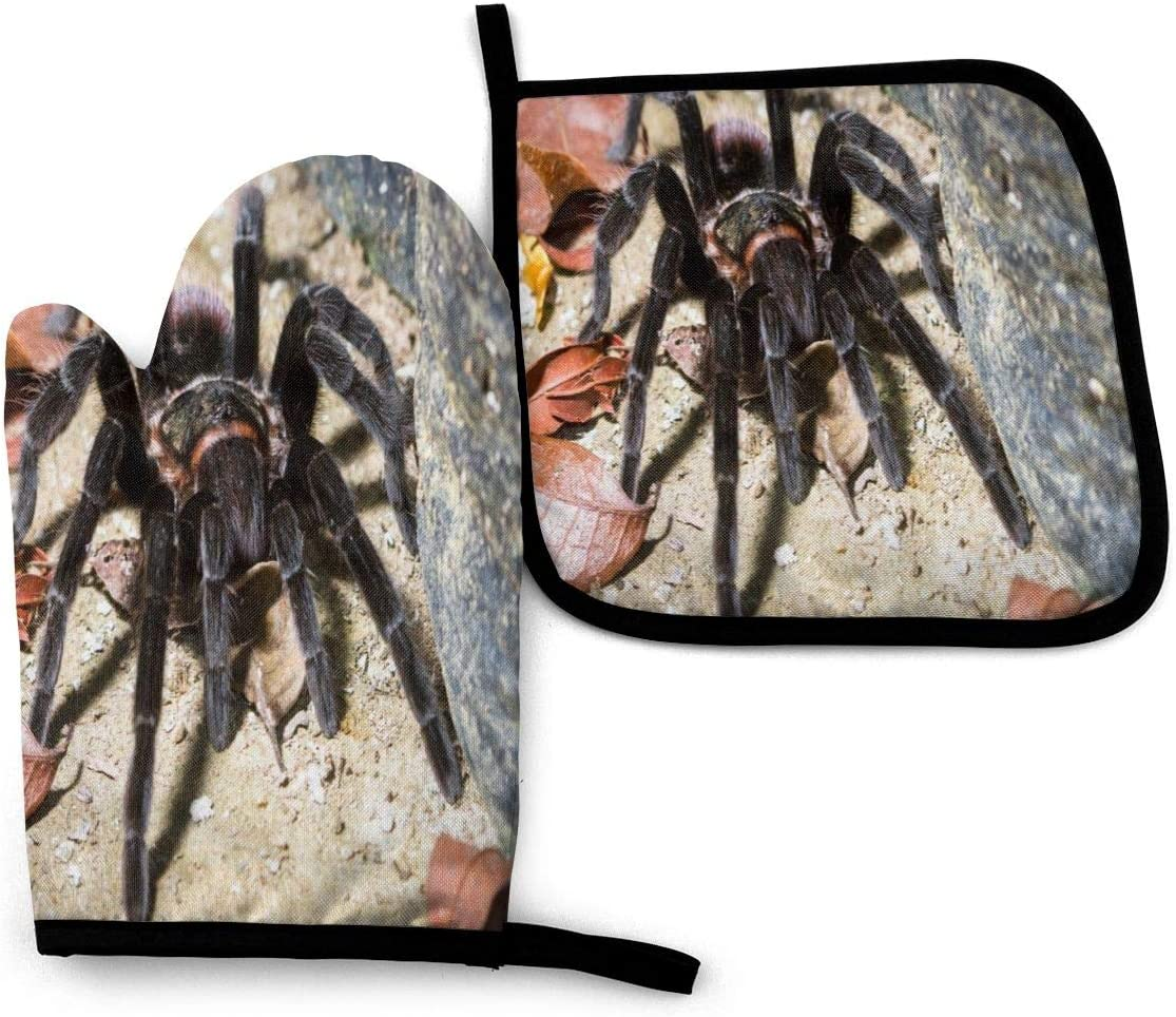 Oven Mitts and Pot Holders Sets, Mexican Red Rump Tarantula Hot Pads and Oven Mitts Sets, Professional Heat Resistant Oven Mitts, for kitchen, Outdoor BBQ Cooking Baking ,Grilling Microwave Gloves