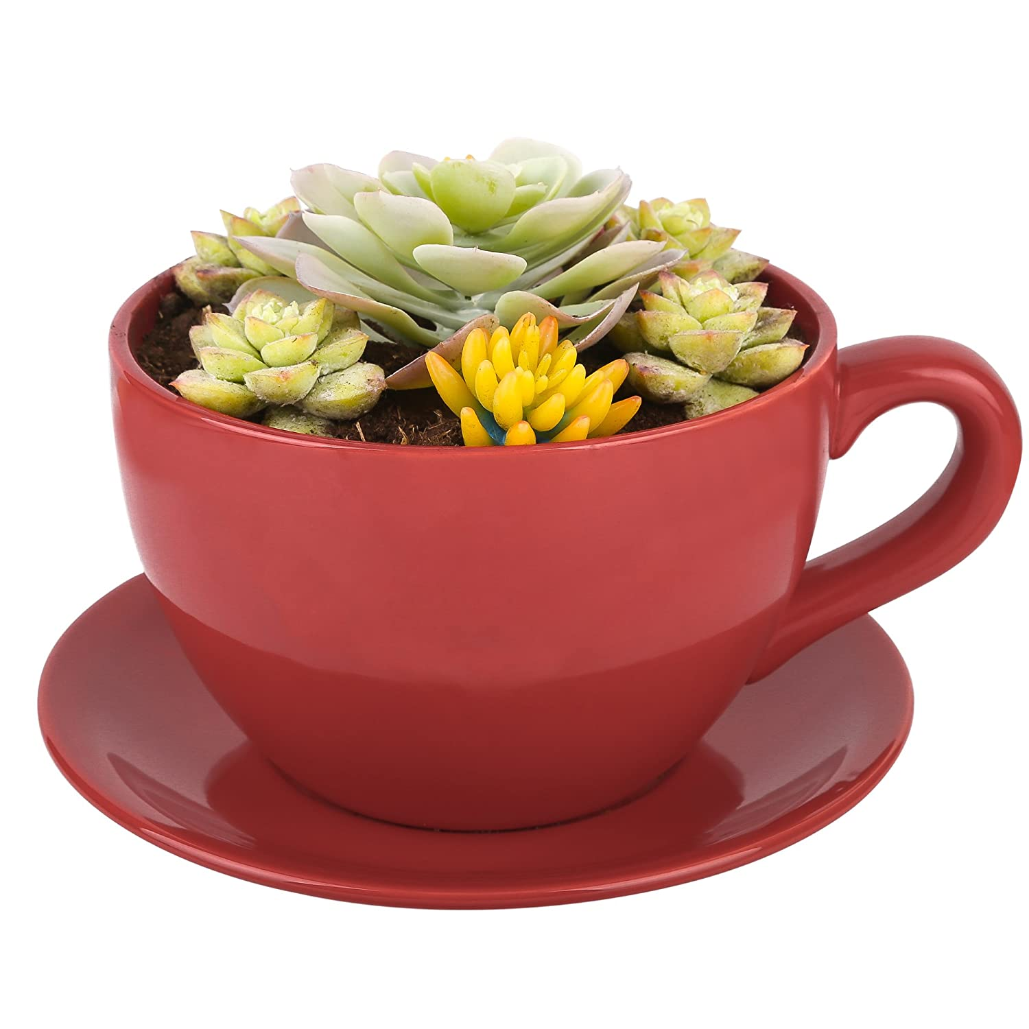 Lifestyle Porcelain Coffee Cup Saucer Shaped Garden Office Flower
