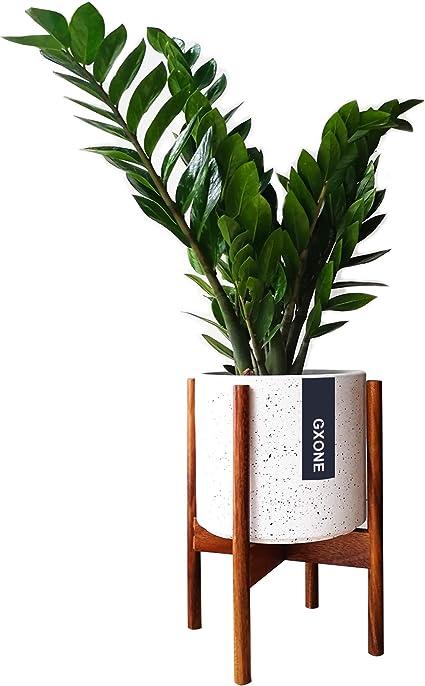 Dorm Decor Walnut Planter Black Walnut Planter Modern Planter Mid Century Modern Planter