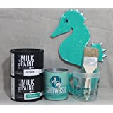 Saltwash kit with Real Milk Paint Soft White and Caribbean Blue Paint