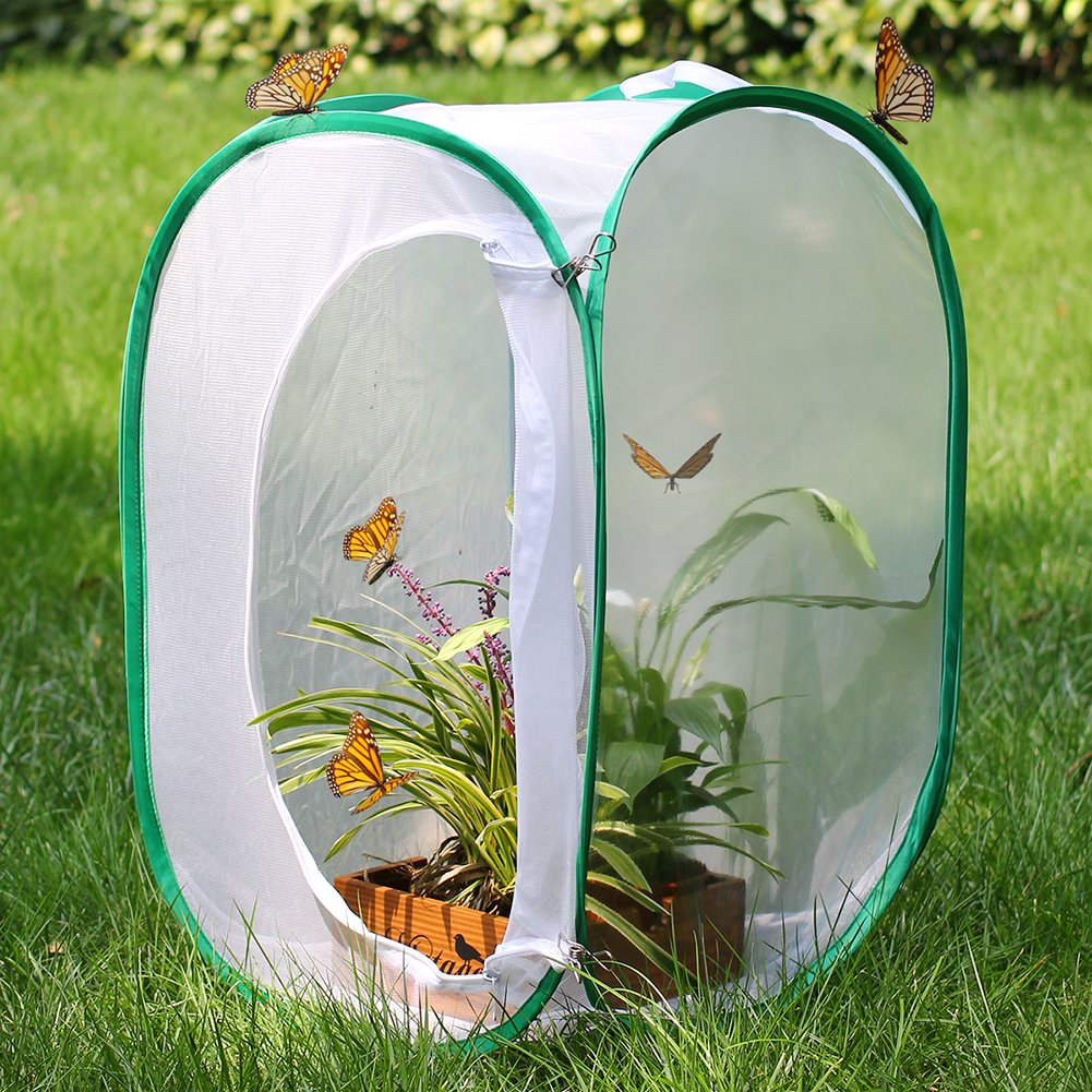 Restcloud Insect and Butterfly Habitat Cage Terrarium - Pop-up 23.6 Inches Tall (White) by Restcloud (Image #3)
