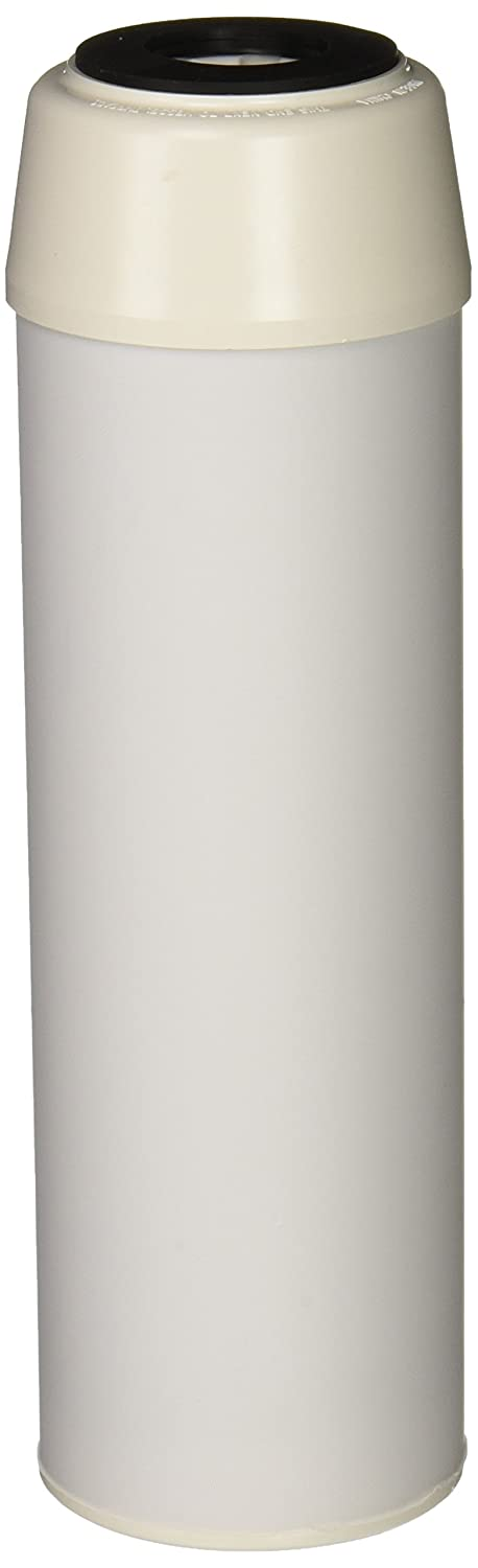 """(Package Of 2) Pentek CC-10 Coconut Carbon Drinking Water Filters (9.75"""" x 2.875"""")"""