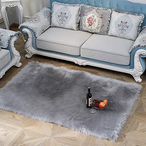 JIWIDO Super Soft Indoor Modern Shag Area Silky Fur Rugs Fluffy Rugs Anti-Skid Shaggy Area Rug