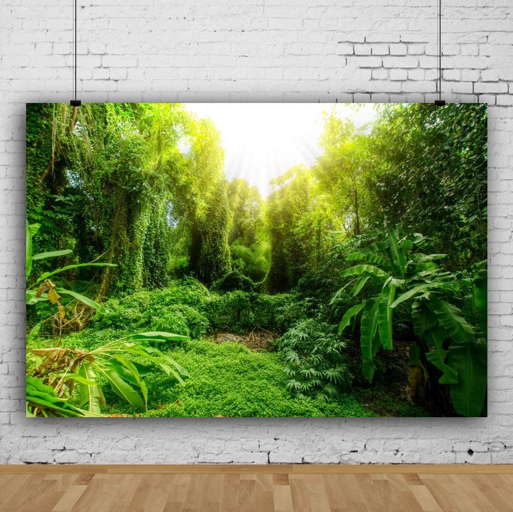 Vinyl 8x6.5ft Tropical Forest Backdrop Sunlight Green Plants Trees Backgrouds for Photography Summer Holiday Rural Scenery Travel Theme Birthday Banner Children Adult Photobooth