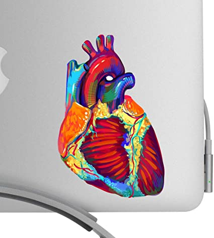Human Heart Colorful Decal