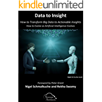 Data to Insight: How to Transform Big Data in to Actionable Insights