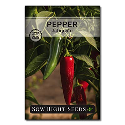 Sow Right Seeds - Jalapeno Pepper Seed for Planting - Non-GMO Heirloom Packet with Instructions to Plant an Outdoor Home Vegetable Garden - Great Gardening Gift (1) : Garden & Outdoor
