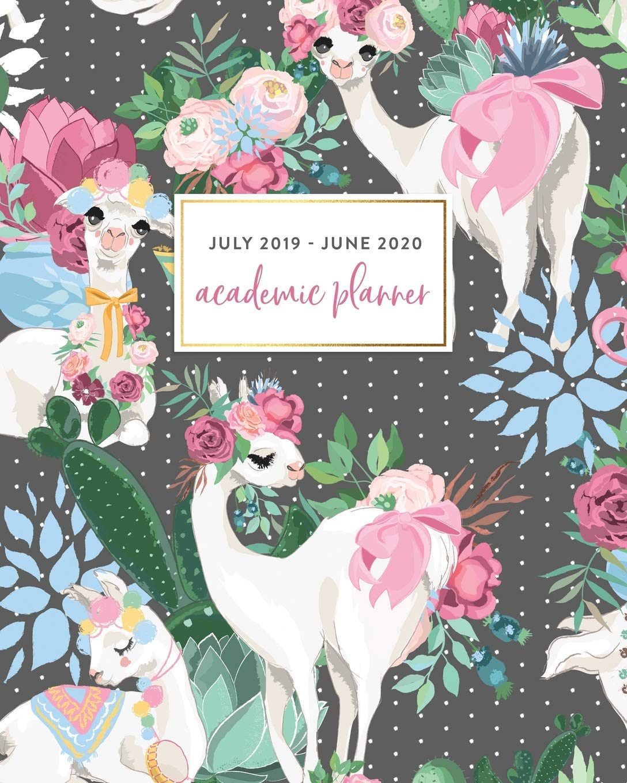 Amazon.com: July 2019 - June 2020 Academic Planner: Pretty ...