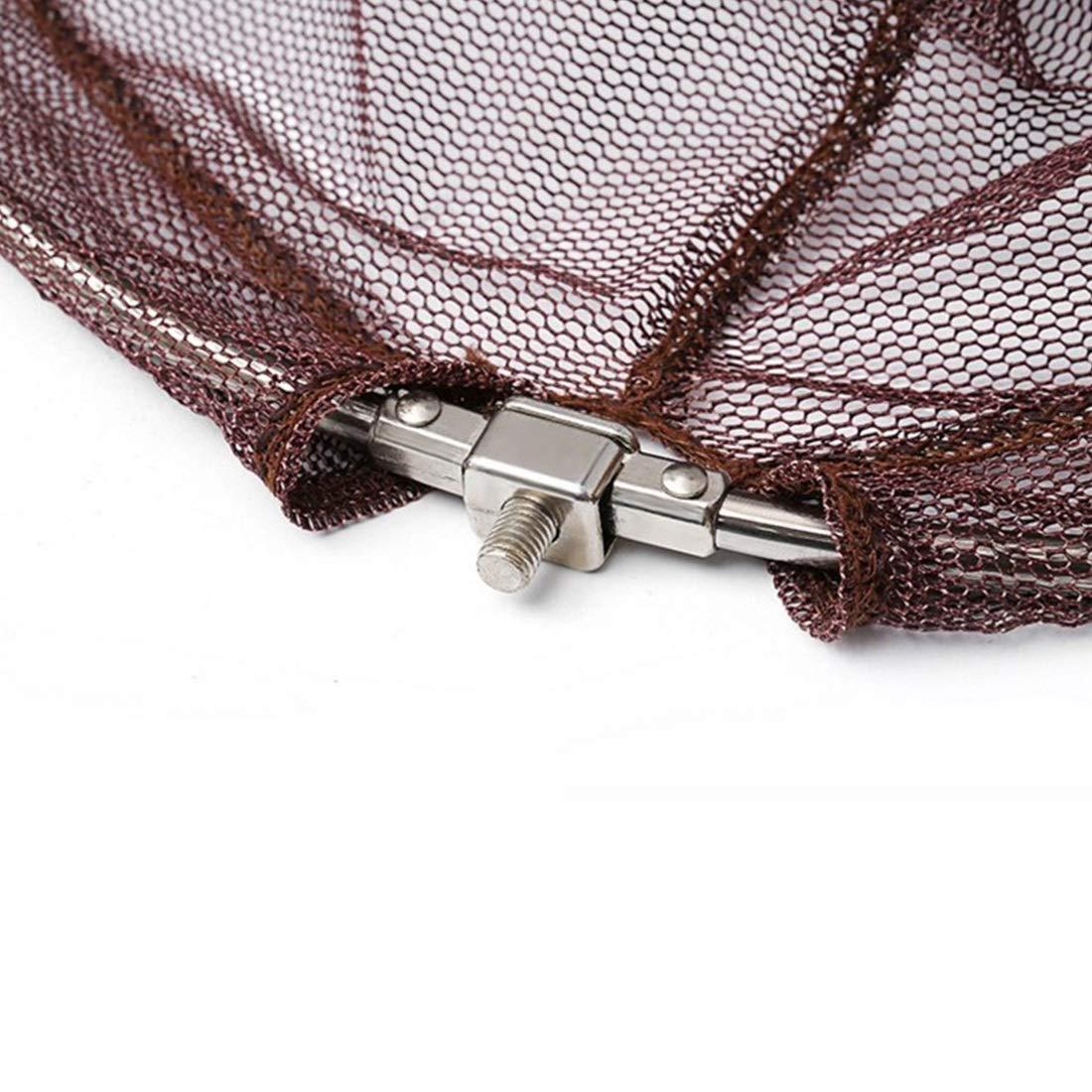 FELICIGG Fliegenfischen Net Portable Faltbare Leichte Net Nylon Nylon Nylon Fischernetz Aluminiumlegierung Rahmen (Größe   2.5m) B07KPS5RL7 Netze Bestellungen sind willkommen e10be3