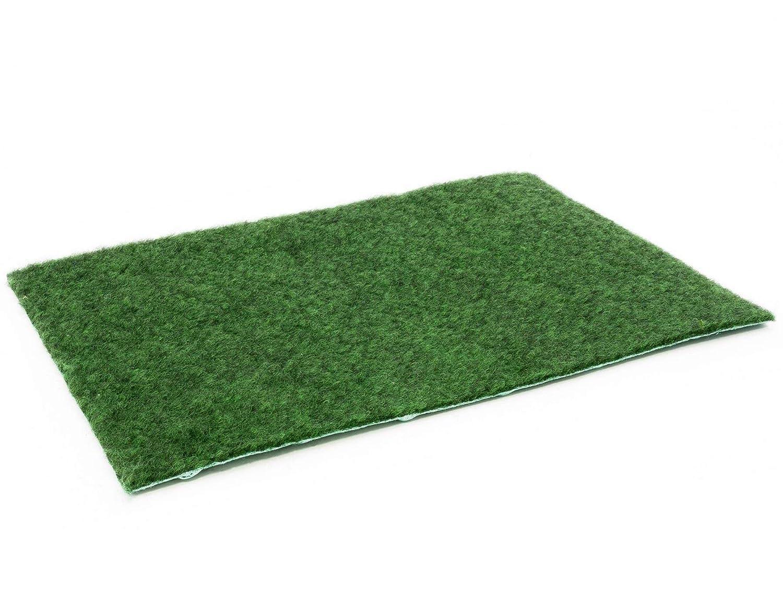 Primaflor - Ideen in Textil Rasenteppich Comfort mit Drainagenoppen - 2,00m x 5,00m Vlies-Kunstrasen Höhe ca 5mm, Wasserdurchlässig 30 Liter Min m², Rasenteppich für Balkon und Terrasse Meterware