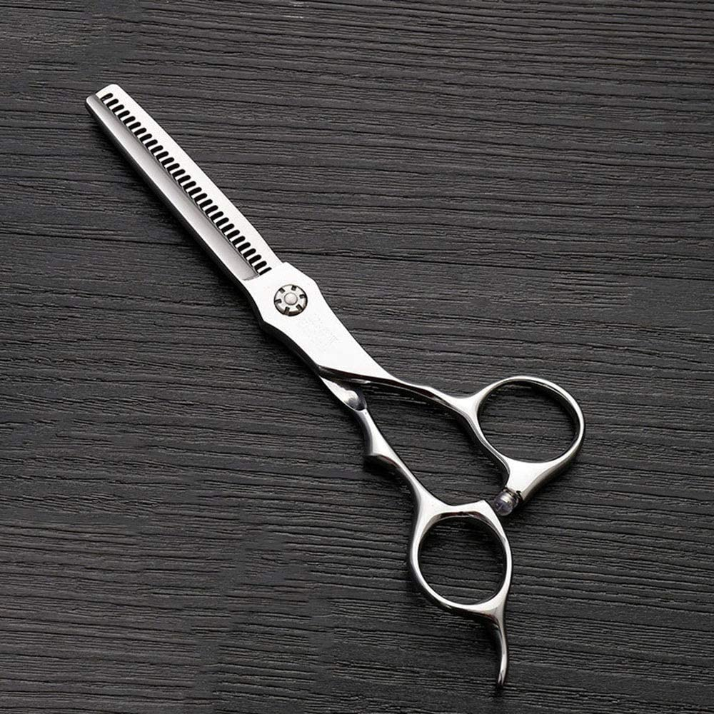 6 Inch Stainless Steel Tooth Shear Thinning Hairdressing Scissors, Hairdresser Special Scissors Shears (Color : Silver) 7115sBWaEeLSL1000_