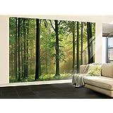 (100x144) Autumn Forest Huge Wall Mural Art