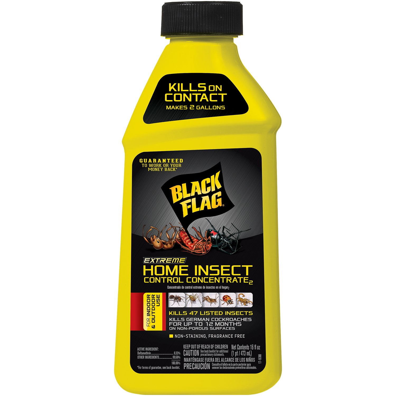 Black Flag Extreme Home Insect Control Concentrate 16 Ounce, for Indoor and Outdoor Use, Makes 2 Gallons