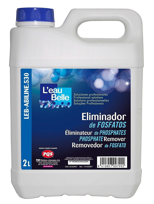 LEau Belle Eliminador de fosfatos PQS para piscinas. Evita la proliferación . Botella 2 Lt.: Amazon.es: Jardín