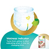 Pampers Premium Care Small Size Diaper Pants