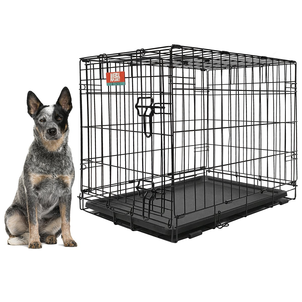 Animal Planet Collapsible Metal Pet Crate with Removable Tray, Large