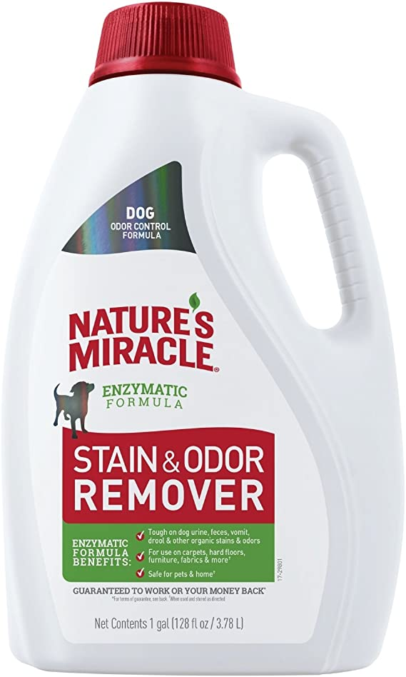 128 Ounce Biokleen Bac-Out Enzyme Stain And Odor Remover Destroys Stains  O