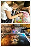 5D DIY Diamond Painting Kit, ZSNUOK 5D Diamond Art