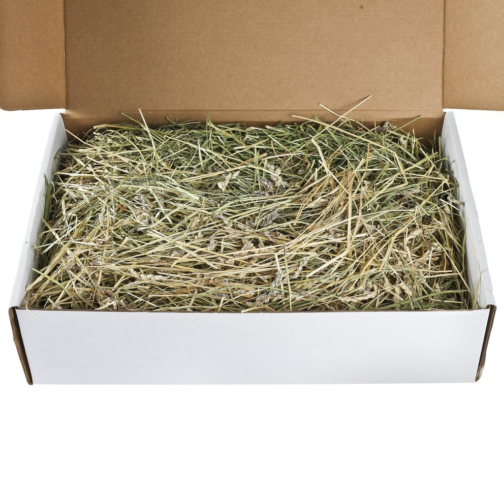 Small Pet Select Oat Hay Pet Food, 10 Lb. by Small Pet Select (Image #1)