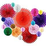 SUNBEAUTY Deco Papier Rosace Pompom Boule Decoration Anniversaire Mariage Salle Bapteme 20 pcs