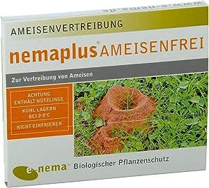 nemaplus® Libre de Hormigas SF nematodos para Combatir Hormigas 50 Millones para 100 m2 o 50 nidos: Amazon.es: Jardín