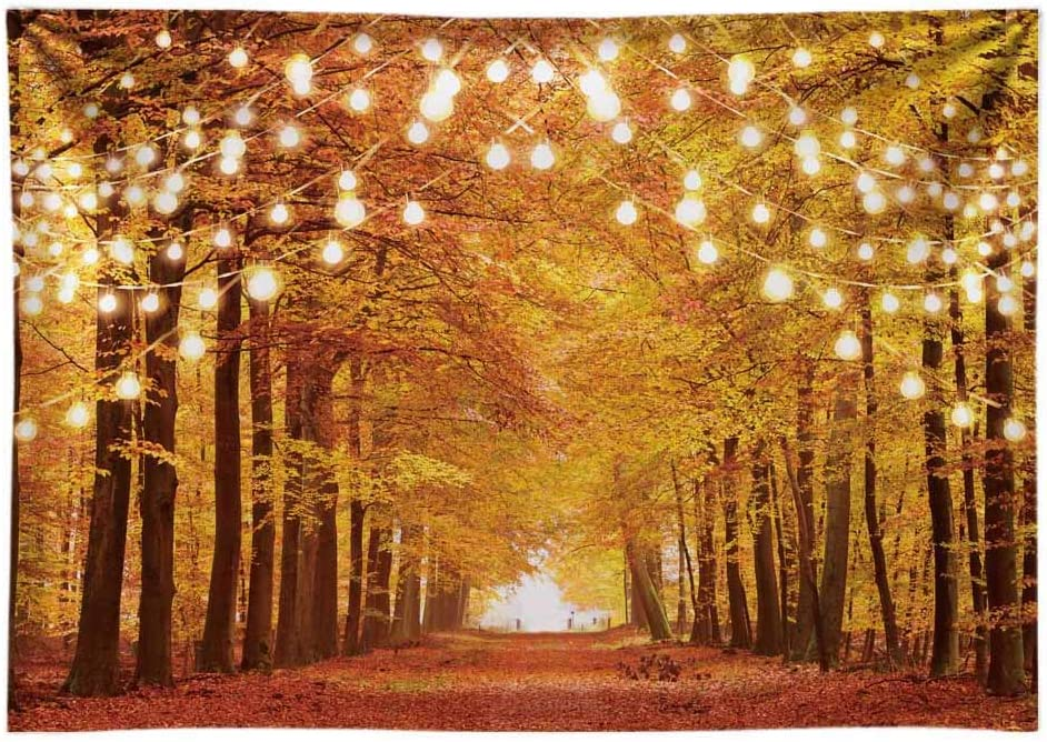 Autumn Forest Backdrop Dreamy Fantasty Photography Background Natural Landscape Holiday Travel Nature Scenery for Photo Studio Backdrop Wedding Birthday Party Backdrop 7x5ft E00T9075