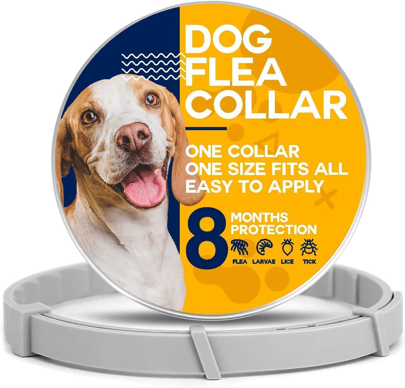 Viestra Water Resistant Collar for Dogs