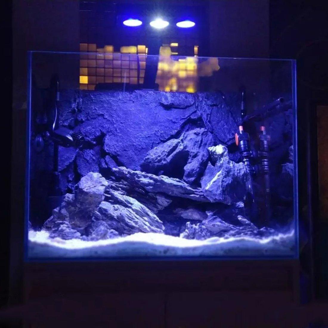 LED acuario luz 30W interior acuario LED iluminación de agua salada con control táctil para arrecife de coral tanque de peces: Amazon.es: Productos para ...