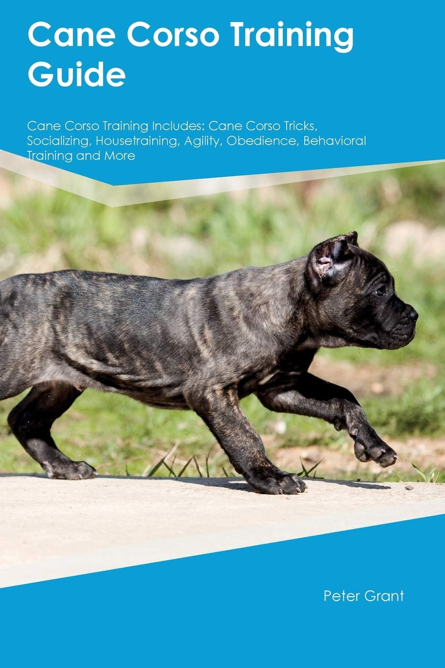 Cane-Corso-Training-Guide-Cane-Corso-Training-Includes-Cane-Corso-Tricks-Socializing-Housetraining-Agility-Obedience-Behavioral-Training-and-More