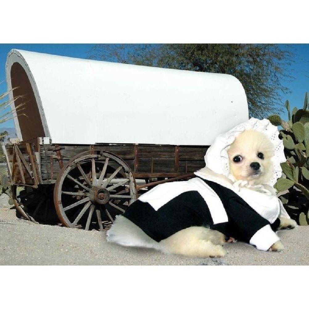 Dog Costume Pilgrim Girl Costumes Dress Your Dogs For Thanksgiving