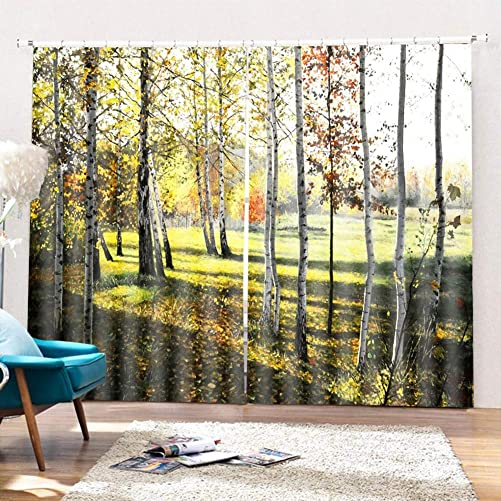 Printing Decor Curtain