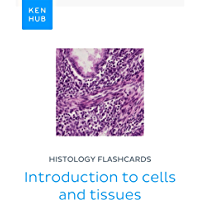 Histology flashcards: Introduction to cells and tissues: Learn all organs, arteries, nerves and tissues on the go…