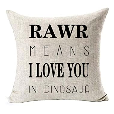 Cotton linen Quote Letters RAWR MEANS I LOVE YOU IN DINOSAUR Throw pillow case Cushion cover pillowcase for Sofa home decor 18  X 18