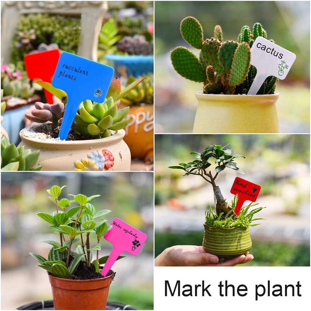 10 CM 100 Piezas SenPuSi Etiquetas y marcadores de pl/ástico en Forma de T para jardiner/ía Etiquetas y marcadores para Plantas Accesorios de jardiner/ía para peque/ñas Herramientas Etiqueta 6 CM