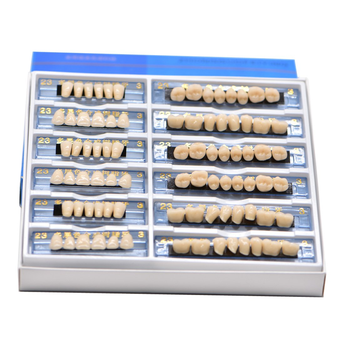 168 Pcs Dental Complete Acrylic Resin Denture False Teeth 6 Sets Synthetic Polymer Resin Denture Teeth 23 A3 Upper + Lower Dental Materials (1 Box)