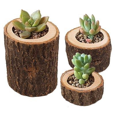 AOMO Succulent Planter Wooden Planter Mini Ceramic Flower Planter Pot 3 Packs (Plants NOT Included): Home & Kitchen