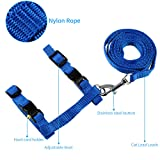 ONSON Cat Harness Leash, Adjustable H harness Nylon Strap Collar with Leash, Dogs Leash and Harness Set, For Small Cat and Pet Walking, Blue