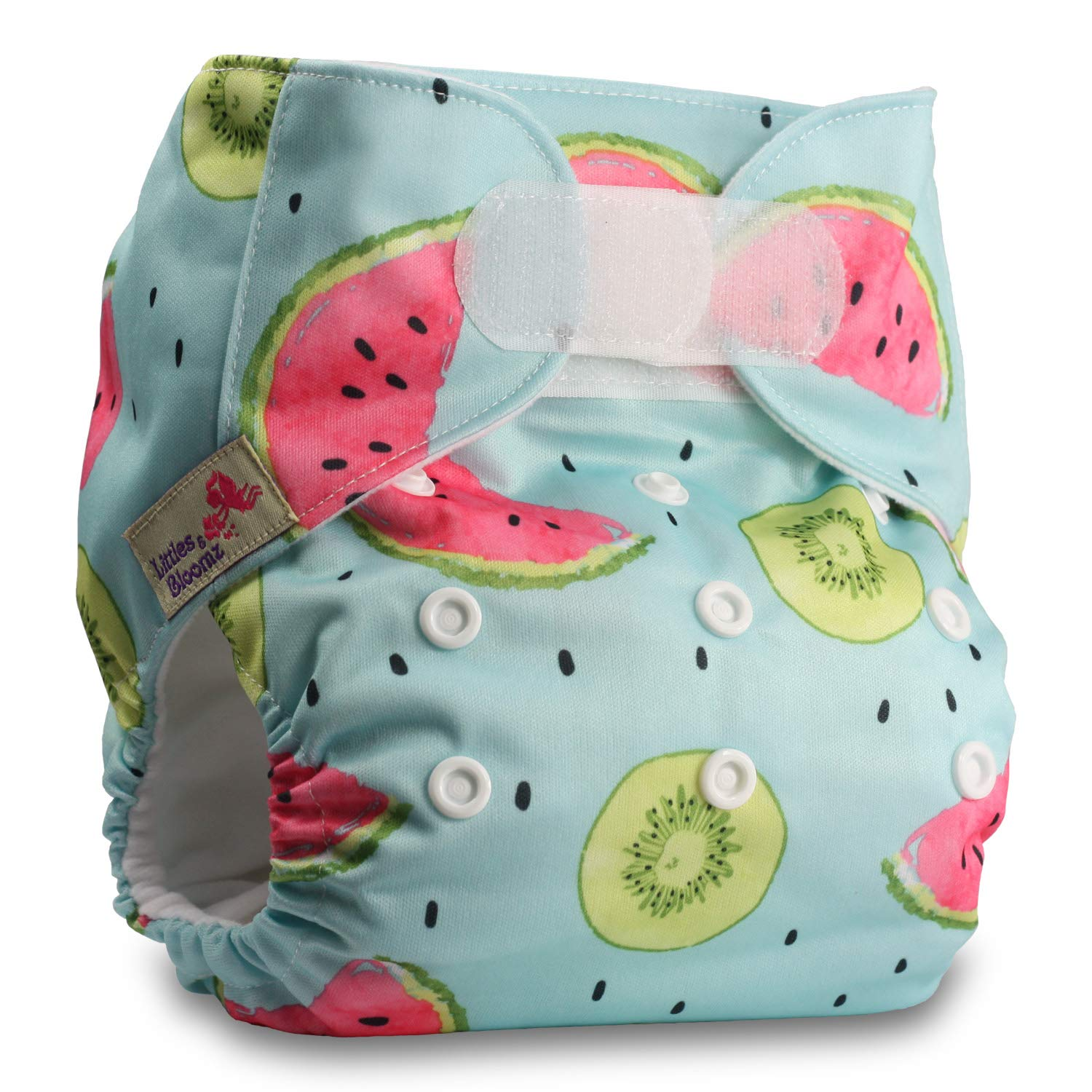 Littles /& Bloomz Reusable Pocket Cloth Nappy with 1 Bamboo Insert Set of 1 Pattern 60 Fastener: Hook-Loop