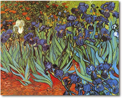Cuadro Decoratt: Matas de lirios - Van Gogh 77x62cm. Cuadro de impresión directa.: Amazon.es: Hogar