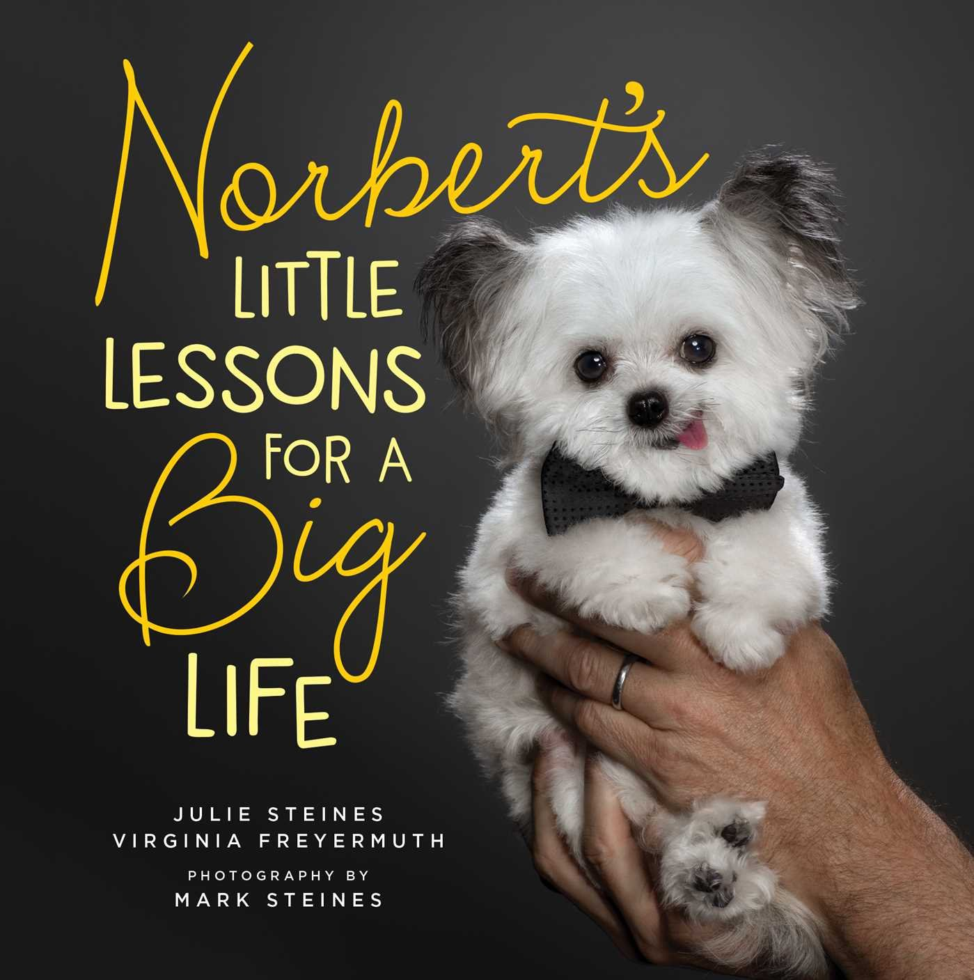 Download Norbert's Little Lessons for a Big Life pdf