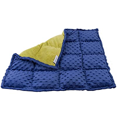 Sensory Weighted Lap Pad for Kids 5 pounds - Great Weighted Lap Blanket for Kids with Autism, ADHD, and Sensory Processing Disorder - Classroom and Special Education Supplies : Office Products