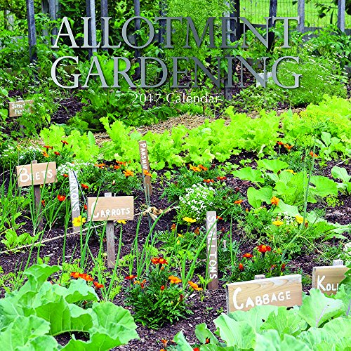 Allotment Vegetable Gardening Monthly Calendar product image