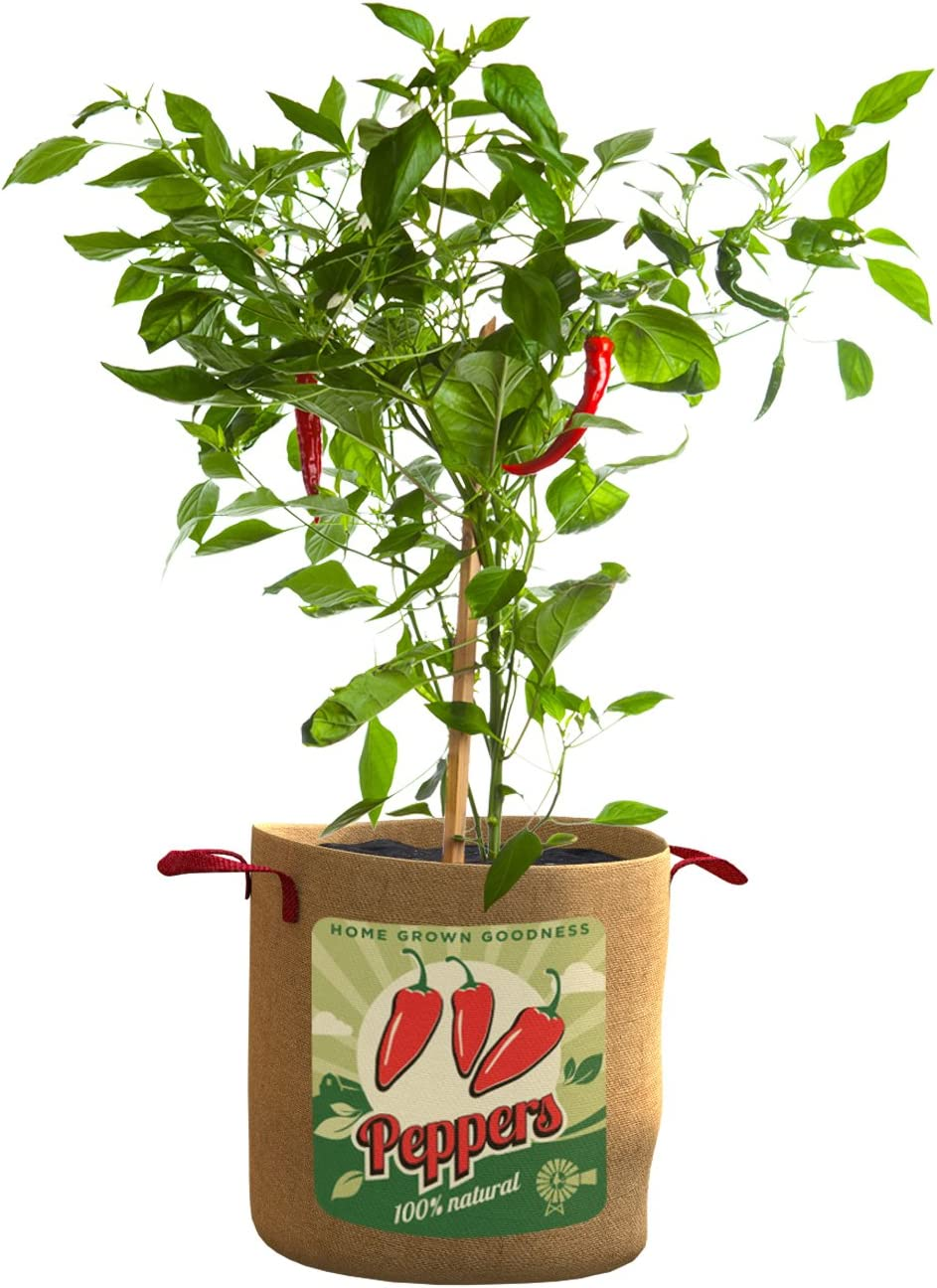 Panacea Products 10 Gallon Grow Bag Peppers