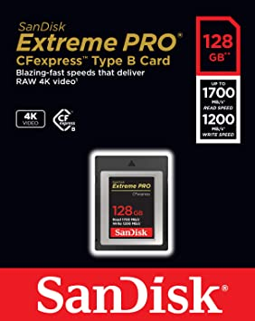 Amazon.com: SanDisk 128GB Extreme PRO CFexpress Card Type B ...