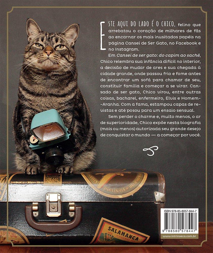 Cansei de Ser Gato. Do Capim ao Sachê (Em Portuguese do Brasil): Amanda Nori: 9788580578447: Amazon.com: Books
