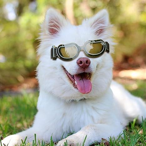 AMBB-DN - Gafas de Sol para Perro, Resistentes al Viento ...